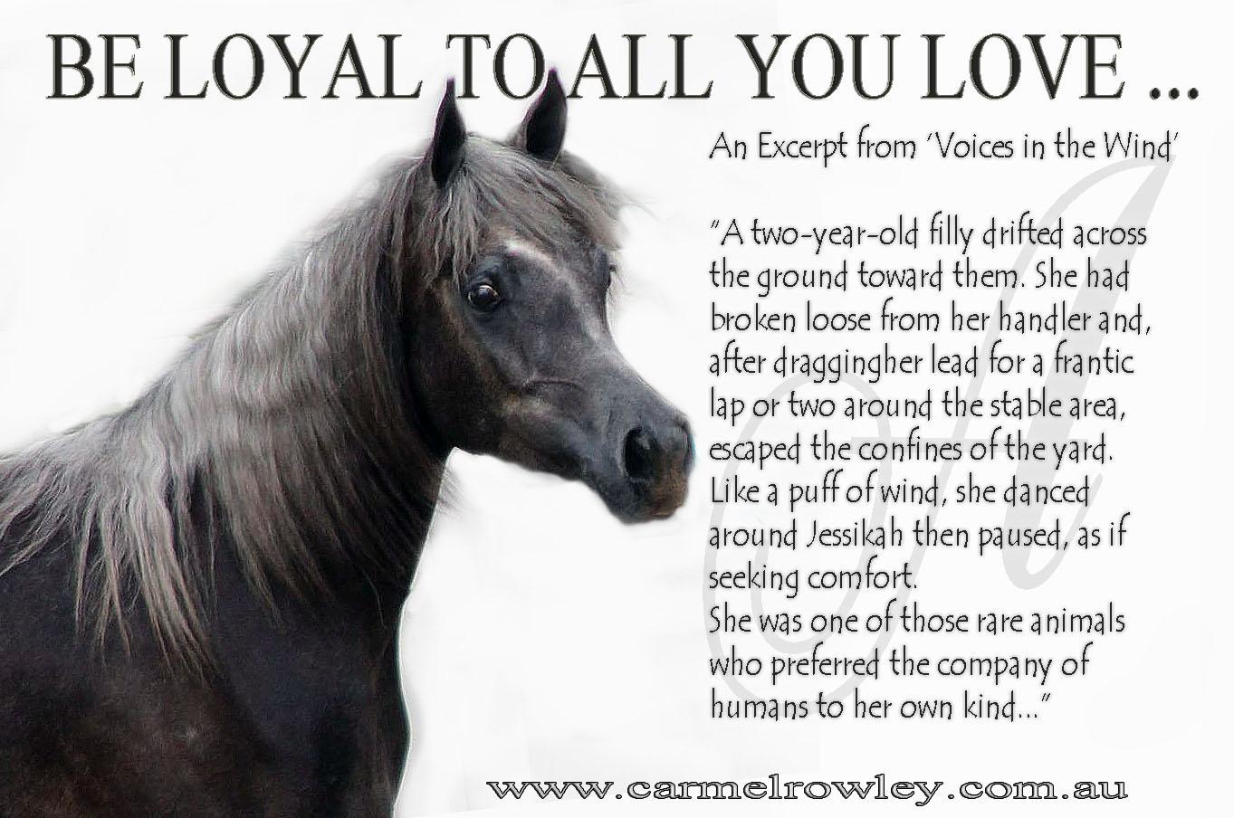 A Special Christmas Loyalty Love And Horses Carmelrowley Com Au